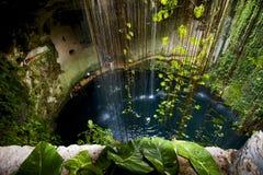 Cenote ill kill Stock Image