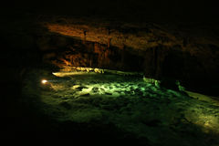Cenote/Merida, Mexico Royaltyfri Foto