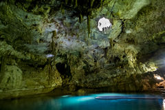 Cenote in Mexcio Royalty Free Stock Image