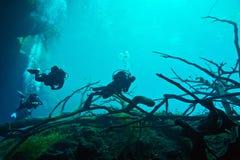 Cenote onderwater Stock Fotografie