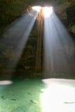 Cenote Samula är 7 km från mitt av staden Valladolid Royaltyfri Fotografi