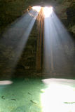 Cenote Samula从镇巴里阿多里德的中心的7 km 免版税图库摄影