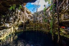 Cenote San Lorenzo Oxman cerca de Valladolid, Yucatán, México Swimm Fotografía de archivo