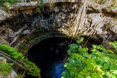 Cenote San Lorenzo Oxman cerca de Valladolid, Yucatán, México Swimm Foto de archivo libre de regalías