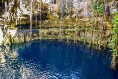 Cenote San Lorenzo Oxman cerca de Valladolid, Yucatán, México Swimm Imagenes de archivo