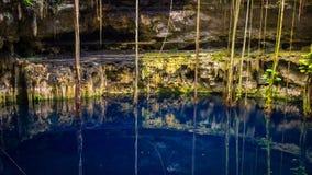 Cenote San Lorenzo Oxman nahe Valladolid, Mexiko lizenzfreies stockfoto