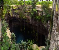 Cenote San Lorenzo Oxman near Valladolid, Mexico Royalty Free Stock Images