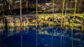 Cenote San Lorenzo Oxman near Valladolid, Mexico Royalty Free Stock Photo