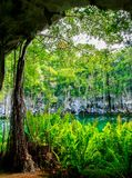Cenote of Santo Domingo Stock Photos