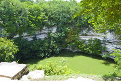 Cenote sink hole royalty free stock photography