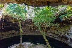 Cenote Suytun at Valladolid, Yucatan - Mexico royalty free stock photography