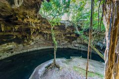Cenote Suytun at Valladolid, Yucatan - Mexico stock photography