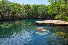 Cenote Swimming Royalty Free Stock Images