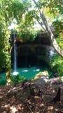 Cenote in Valladolid stock foto