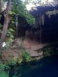Cenote a Valladolid, penisola Yucatan, Messico Fotografia Stock