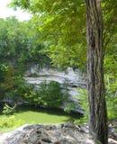 Cenote Wannenloch stockfotos