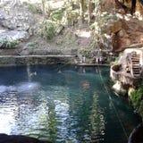Cenote Zaci Obraz Stock