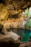 Cenote Zaci Mexico Valladolid Yucatan. Cebote Zaci in Valladolid Mexico on Yucatan peninsula. A natural limestone sinkhole where people swim in the middle of the Stock Photo