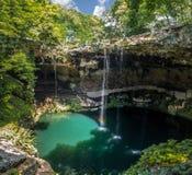 Cenote Zaci, Valladolid -, Meksyk Zdjęcie Royalty Free
