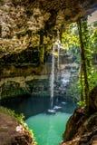 Cenote Zaci, Valladolid -, Meksyk Obrazy Stock