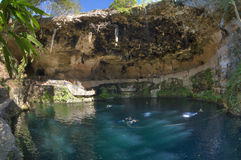 Cenote Zaci in Valladolid, Yucatan Stock Afbeeldingen