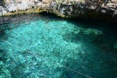 Cenote Zacil Ha dichtbij Tulum Mexico royalty-vrije stock foto's