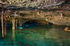Cenotedos Ojos stock fotografie