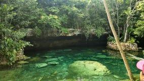 Cenotes arkivfoto