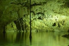 Cenotes Lizenzfreies Stockfoto