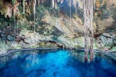 Cenotes em Cuzama, México imagens de stock