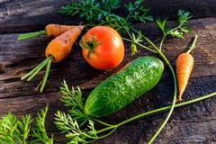 Cenoura do tomate do pepino Fotografia de Stock Royalty Free