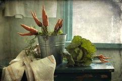 Cenoura e repolho fotografia de stock