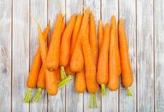 Cenoura fresca fotografia de stock