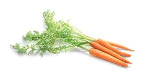 Cenoura fresca com as folhas isoladas Imagens de Stock