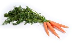 Cenoura no branco Fotos de Stock
