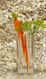 Cenoura orgânica fresca no vidro, alimento saudável, nós podemos fazer o suco de cenoura Fotos de Stock