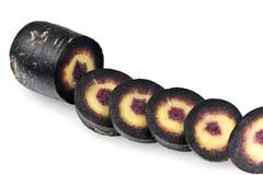 Cenoura preta, scortzonera Fotografia de Stock