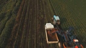 Cenoura que colhe no campo do fazendeiro Silhueta do homem de negócio Cowering filme