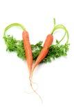 Cenouras arranjadas na forma do coração imagens de stock
