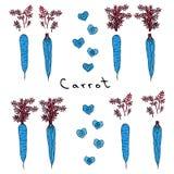 Cenouras azuis loucas estranhas Mão realística ilustração tirada Estilo da garatuja de Savoyar Imagens de Stock Royalty Free
