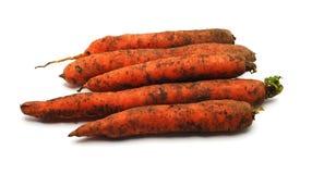 Cenouras cruas Fotos de Stock