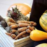 Cenouras da colheita em uma caixa de madeira fotos de stock