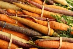 Cenouras do arco-íris Fotos de Stock