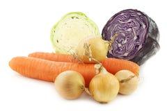 Cenouras do inverno, cebolas marrons, couve vermelha e couve aguçado Imagens de Stock