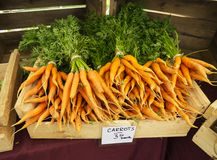 Cenouras do mercado dos fazendeiros imagens de stock