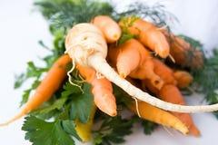 Cenouras e aipo Imagens de Stock