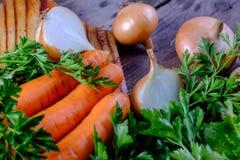 Cenouras e cebolas Foto de Stock