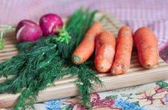 Cenouras e rabanete uncleared crus Fotos de Stock Royalty Free