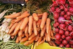 Cenouras e radishes Fotos de Stock Royalty Free