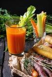 Cenouras e suco coloridos Imagem de Stock Royalty Free